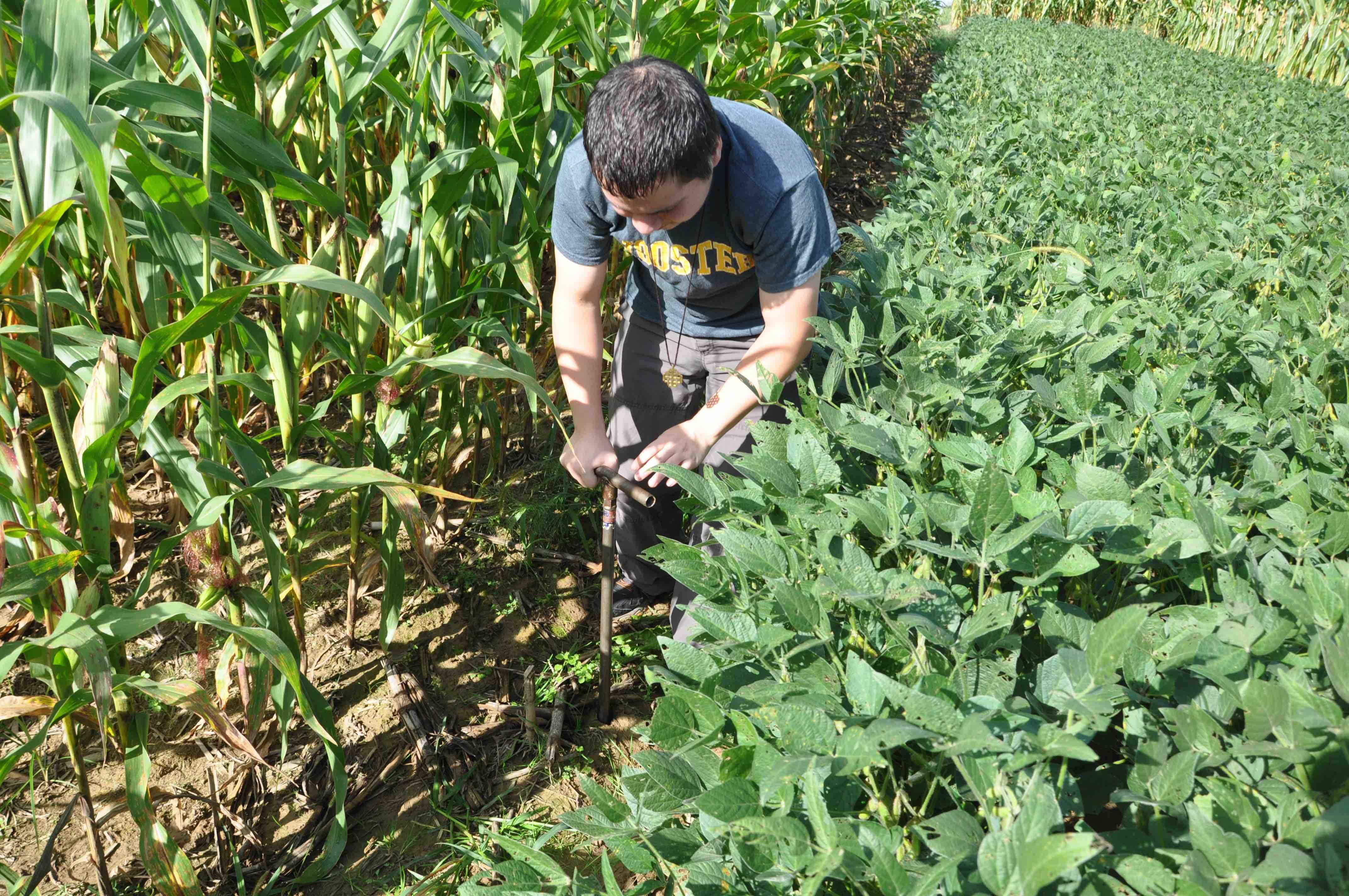 soil_coring